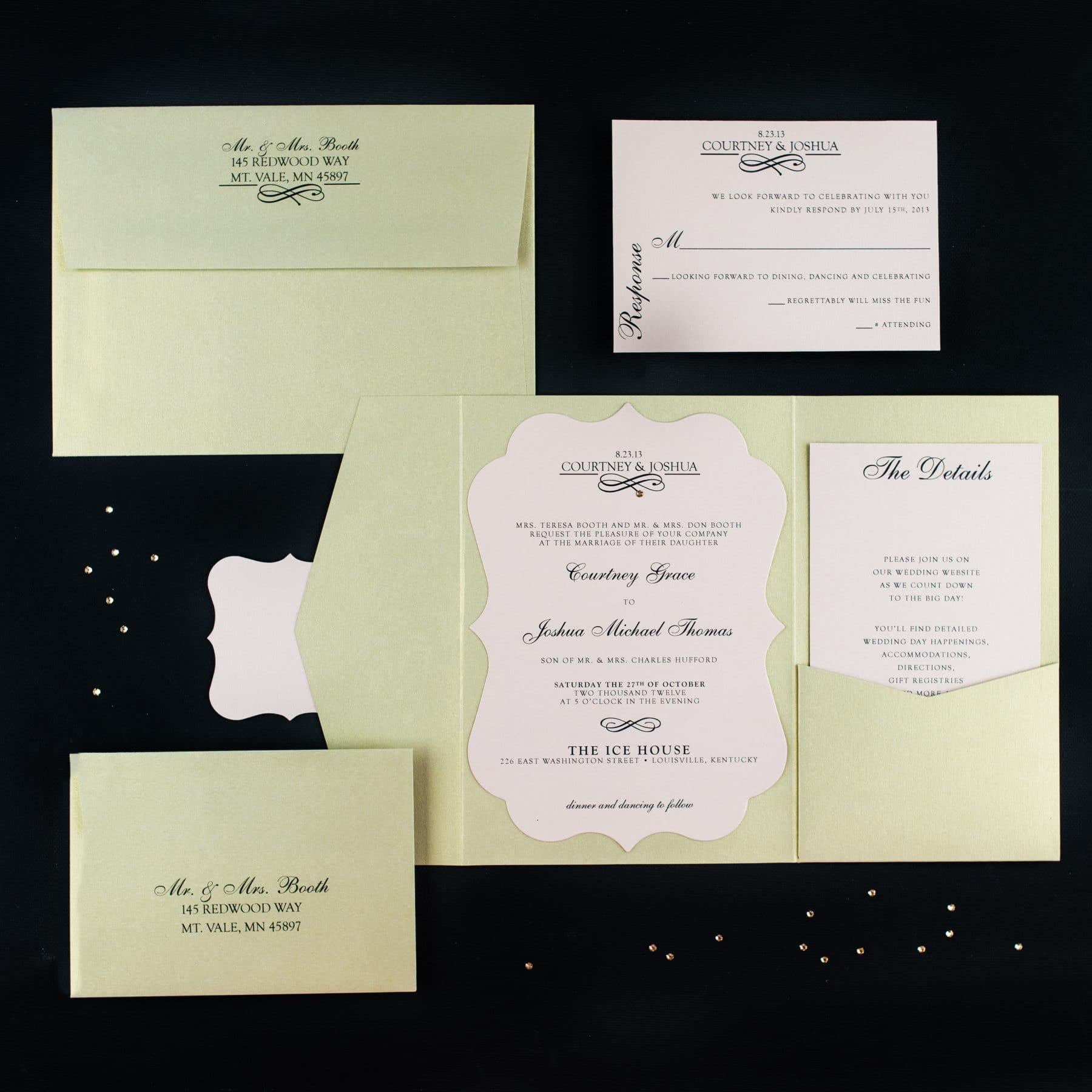 Blush Champagne Wedding Invitations - Too Chic & Little Shab Design ...