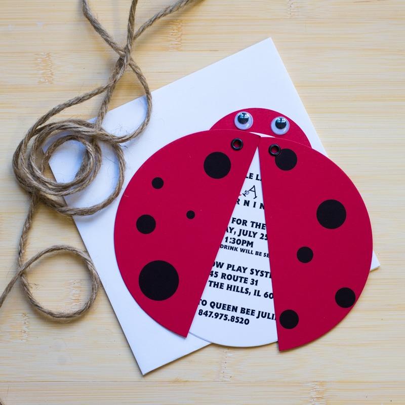 Ladybug Birthday Invitations Too Chic Little Shab Design Studio