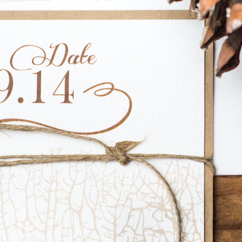 Coral Reef Save the Dates - Too Chic & Little Shab Design Studio, Inc.